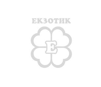 Bvlgari - Omnia Green Jade EDT